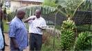 Vice President Visits Kawanda_12